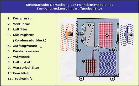 Bautrocknung / Kondenstrocknung